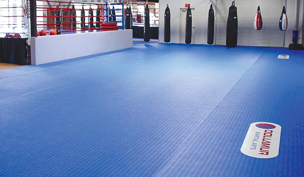 dollamur flexiroll boxing gym mats